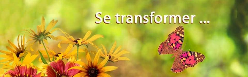 Se-transfoemer
