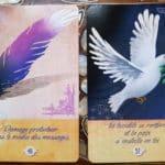 Le message du cœur de vie du 23 au 29 novembre